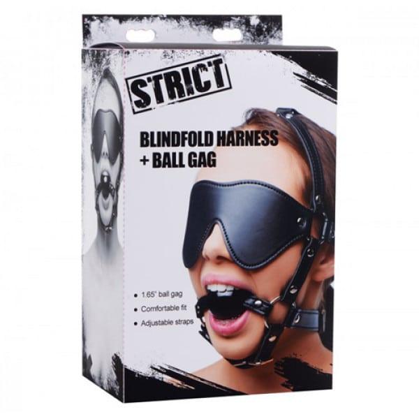 Kunstleren Masker Met Ball Gag Verpakking Bondage BDSM